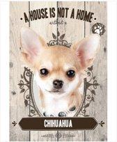 Wandbord - Chihuahua -14x20cm-