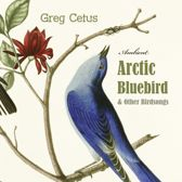 Arctic Bluebird and Other Birdsongs: Ambient Soundscape for Meditation