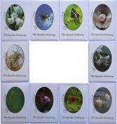 Rouwkaarten - Condoleance kaarten - Set van 10--L-065
