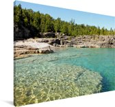 Bos bij het Nationaal park Bruce Peninsula in Canada Canvas 60x40 cm - Foto print op Canvas schilderij (Wanddecoratie woonkamer / slaapkamer)