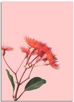 Rode bloemen poster DesignClaud - Bloemstillevens – Rood – A4 + Fotolijst wit