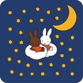 Kreisy Nijntje Sleep - Speelmat Pluche Nacht - Wasbaar - Antislip - 60x60 cm - Vierkant