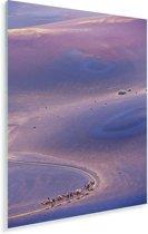 Luchtfoto van kamelen in het Nationaal park Timanfaya op Lanzarote Plexiglas 120x180 cm - Foto print op Glas (Plexiglas wanddecoratie) XXL / Groot formaat!