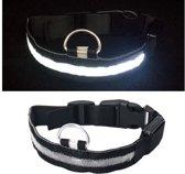 LED honden halsband - Zwart L