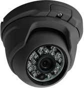 Dome Camera Analoog