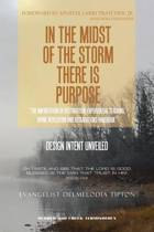 In the Midst of the Storm There Is Purpose