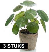 3x stuks Kunstplanten pannekoekplant  groen in pot 25 cm - Kamerplanten groen pilea