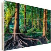 Felle kleuren in het tropische regenwoud in de zomer Vurenhout met planken 30x20 cm - klein - Foto print op Hout (Wanddecoratie)