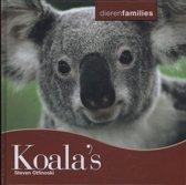 Dierenfamilies - Koala's