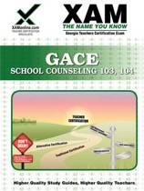 GACE School Counseling 103, 104 Teacher Certification Exam