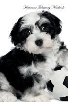 Havanese February Notebook Havanese Record, Log, Diary, Special Memories, to Do List, Academic Notepad, Scrapbook & More