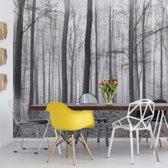 Fotobehang Black And White Misty Forest | V8 - 368cm x 254cm | 130gr/m2 Vlies