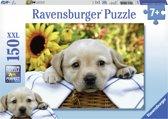 Ravensburger Kleine picknick - Puzzel