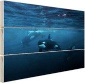 Orkas onder water Hout 120x80 cm - Foto print op Hout (Wanddecoratie)