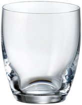 Whisky tumbler Scarlet 320ml