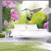 Fotobehang - Kolibrie met paarse bloem