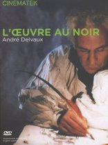 Loeuvre Au Noir (Fr/Nl) (dvd)