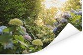 Gele hortensia's in de tuin Poster 180x120 cm - Foto print op Poster (wanddecoratie woonkamer / slaapkamer) XXL / Groot formaat!