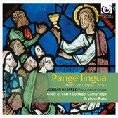 Pangue Lingua