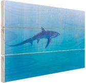 FotoCadeau.nl - Alopias haai Hout 80x60 cm - Foto print op Hout (Wanddecoratie)
