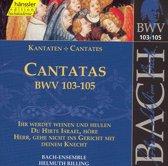 Cantatas Bwv103-105(Ihr Werdet Wein