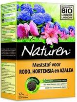 Naturen hortensia, rodo, azalea - 1,7 kg - set van 3 stuks