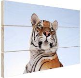 Stoere tijger blauwe lucht Hout 80x60 cm - Foto print op Hout (Wanddecoratie)