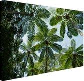 FotoCadeau.nl - Bomen en bladeren in jungle Canvas 30x20 cm - Foto print op Canvas schilderij (Wanddecoratie)