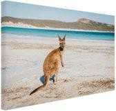 Omkijkende kangoeroe Canvas 80x60 cm - Foto print op Canvas schilderij (Wanddecoratie)