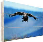 Oorgier met wijd gespreide vleugels Vurenhout met planken 60x40 cm - Foto print op Hout (Wanddecoratie)
