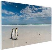 Koningspinguins op het strand Glas 180x120 cm - Foto print op Glas (Plexiglas wanddecoratie) XXL / Groot formaat!