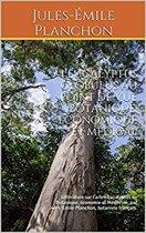 L'eucalyptus globulus au point de vue botanique, économique et médical