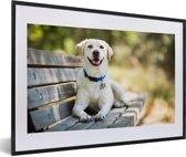 Foto in lijst - Labrador Retriever ligt op een bankje fotolijst zwart met witte passe-partout 60x40 cm - Poster in lijst (Wanddecoratie woonkamer / slaapkamer)