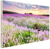 Paarse bloemenzee Hout 160x120 cm - Foto print op Hout (Wanddecoratie) XXL / Groot formaat!