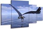 Canvas schilderij Vogel | Blauw, Wit | 160x90cm 4Luik