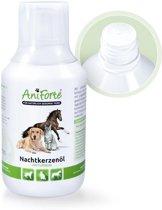 AniForte® Natuurlijke Teunisbloemolie (250ml)