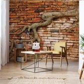 Fotobehang Grunge Brick Wall Texture Tree Roots   V8 - 368cm x 254cm   130gr/m2 Vlies