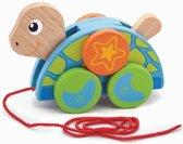 Trekdier - Schildpad