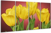 Glasschilderij Tulpen | Geel, Rood, Groen | 160x80cm 4Luik | Foto print op Glas |  F003206
