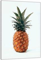 Plexiglas –Ananas– 60x90cm (Wanddecoratie op Plexiglas)