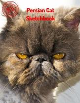 Persian Cat Sketchbook: Blank Paper for Drawing, Doodling or Sketching 120 Large Blank Pages (8.5''x11'') for Sketching, inspiring, Drawing Anyt