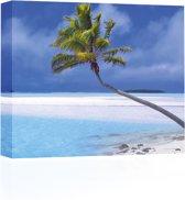 Sound Art - Canvas + Bluetooth Speaker Palm Tree On White Beach (23 x 28cm)