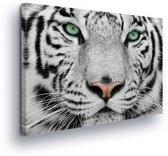 Tiger Black White Canvas Print 100cm x 75cm