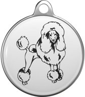 Poodle Tommy Tag P023