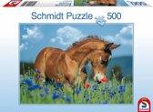 Schmidt puzzel Welsh Pony 500 stukjes