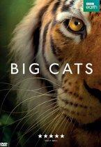 Big Cats serie 1
