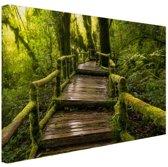 Mooi regenwoud en jungle Canvas 120x80 cm - Foto print op Canvas schilderij (Wanddecoratie woonkamer / slaapkamer)