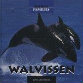 Dierenfamilies - Walvissen