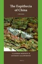 The Eupithecia of China