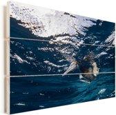 Een bruine gent duikt in het water Vurenhout met planken 90x60 cm - Foto print op Hout (Wanddecoratie)